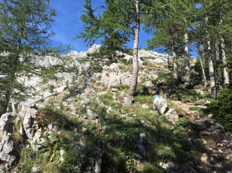 Der Aufstieg auf den Schneeberg erfolgt über den Nandlgrat